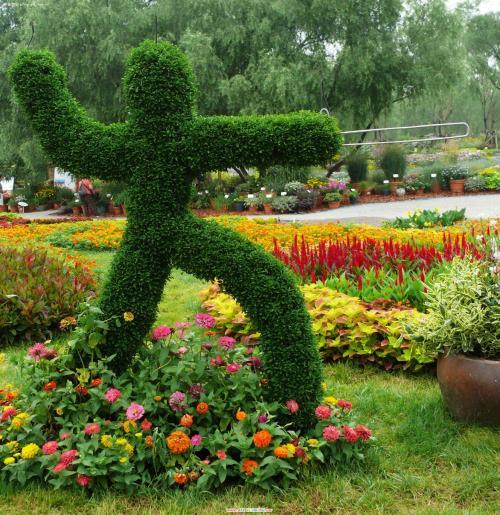 你所不知道的园艺色彩搭配设计小技巧