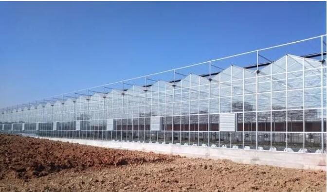小编向你讲解玻璃温室大棚设计原则及建造注意事项有哪些?