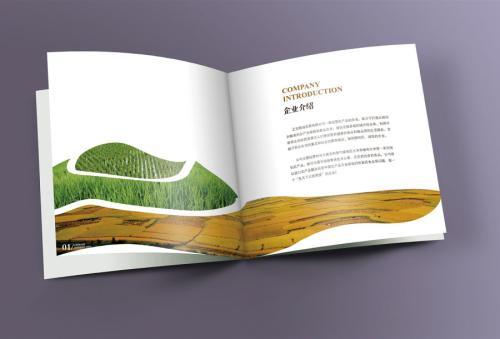 产品画册设计如何成功造成 消费者留意?设计思路又是什么?