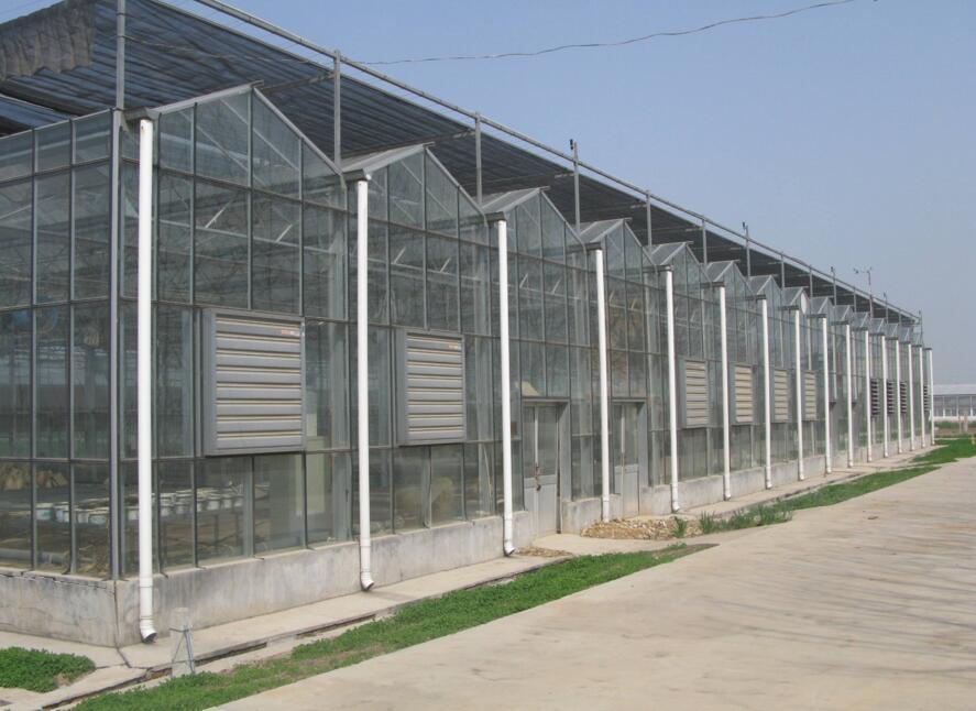 来看看玻璃温室大棚在大伙儿的日常中如何进行维护工作呢?