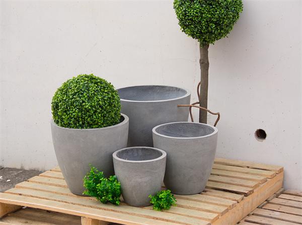 怎样给你心爱的植物,选择适合的花盆?