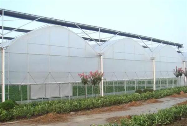 什么是阳光板?阳光板温室与连栋薄膜温室大棚的区别