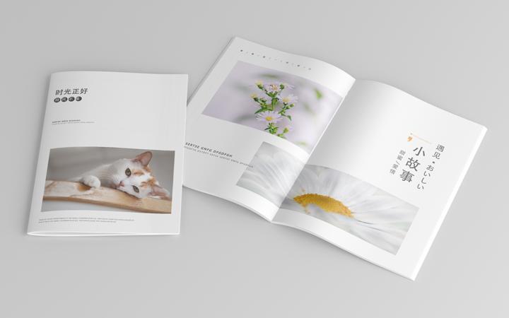 画册印刷的基本步骤是怎样的?