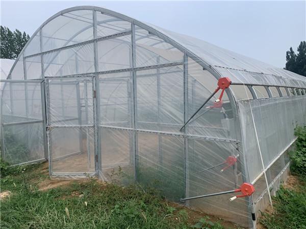快来这里了解连栋温室大棚的优点以及使用的注意问题
