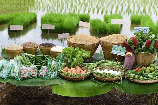 农产品的分类以及发展趋势你都GET了沒有?一起来看看吧!
